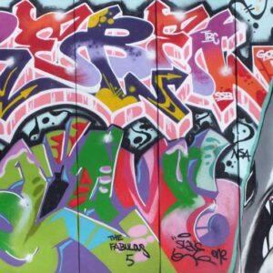 Biostrip Anty-Graffitti